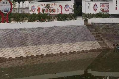 护坡砖案例